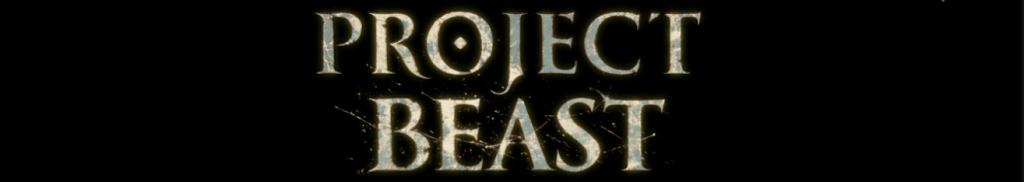 Project Beast to duchowy następca Demon's Souls oraz Dark Souls.