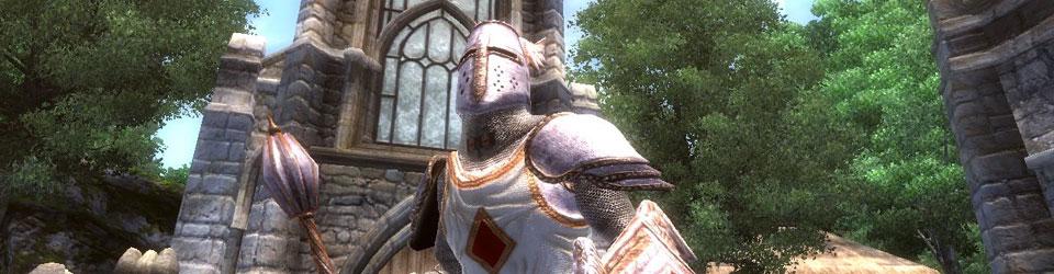 The Elder Scrolls to bardzo spore uniwersum, które składa się z pięciu części głównych, oraz gry Online.