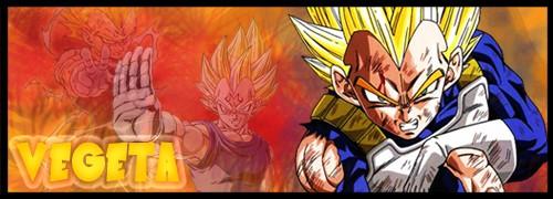 Vegeta to jeden z głównych bohaterów serialu Dragon Ball. Ukochany przez graczy za swój charakter oraz dumę.