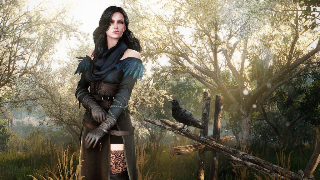 Witcher-DLC-2